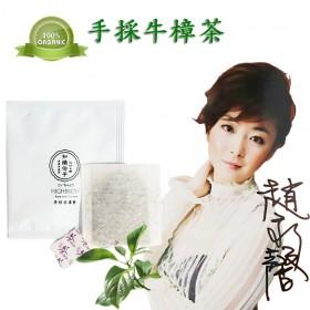 知識份子-牛樟茶包3gx30入(100%天然牛樟葉甘醇可口)